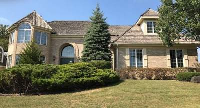Orland Park Single Family Home For Sale: 10606 Misty Hill Road