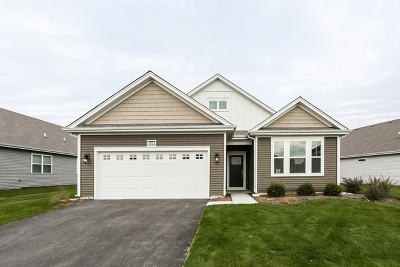 Pingree Grove Single Family Home New: 970 Carolina Court