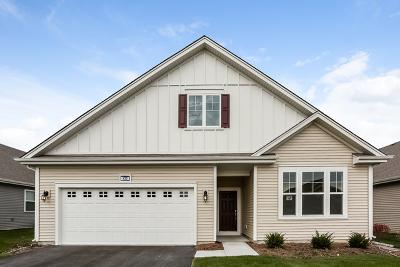 Pingree Grove Single Family Home New: 930 Carolina Court