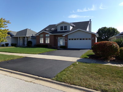 Steger Single Family Home Contingent: 218 Lakeview Court