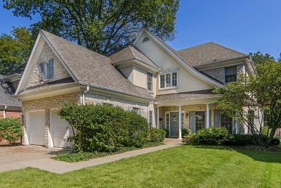 Hinsdale Single Family Home New: 223 Justina Street