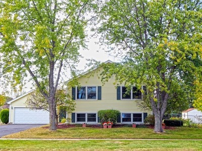 Lake Zurich Single Family Home New: 685 Old Mill Grove Road
