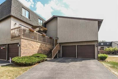 Roselle Condo/Townhouse New: 37 Portwine Drive