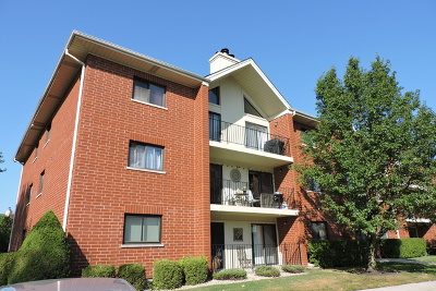 Tinley Park Condo/Townhouse New: 18206 Rita Road #2A