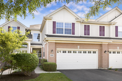 Naperville Condo/Townhouse New: 939 Winners Cup Court
