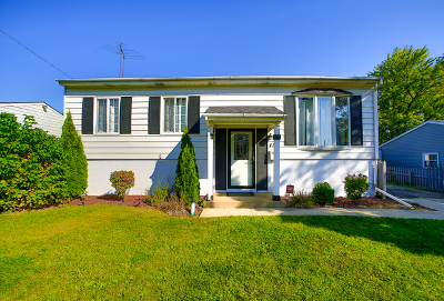 Romeoville Single Family Home New: 412 Tallman Avenue
