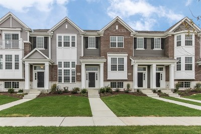 Naperville Condo/Townhouse Contingent: 2942 Madison Lot#602 Drive