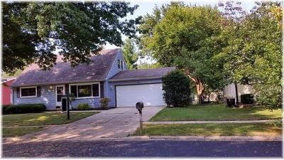 Elgin Single Family Home New: 370 Cornell Lane