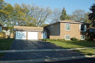 Elgin Multi Family Home New: 373-375 Princeton Avenue