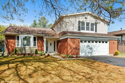 Bolingbrook Single Family Home New: 676 Londonberry Lane