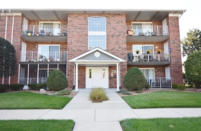Tinley Park Condo/Townhouse New: 18220 Eagle Drive #2N