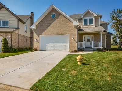 Homer Glen Single Family Home Contingent: 14448 South Provencal Drive