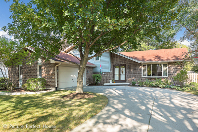 Naperville Single Family Home New: 106 North Whispering Hills Drive