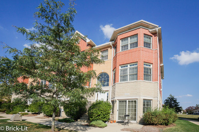 Condo/Townhouse Contingent: 17937 Fountain Circle