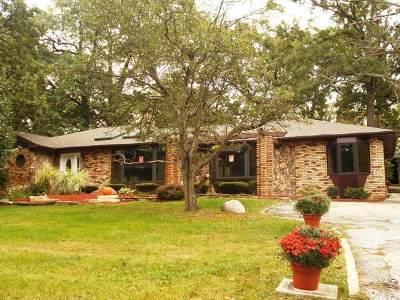 Palos Park Single Family Home New: 9109 West 123rd Street