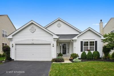Pingree Grove Single Family Home New: 702 Bristol Street
