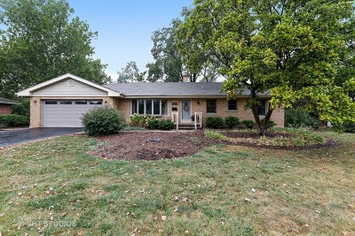 Downers Grove Single Family Home For Sale: 4624 Sterling Road