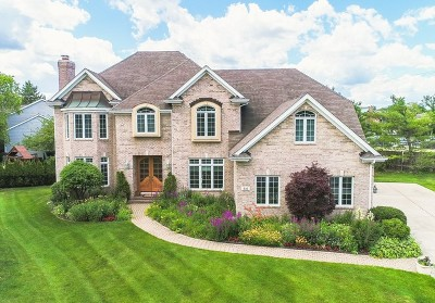 Hinsdale Single Family Home New: 510 Wedgewood Court