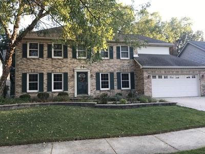 Naperville Single Family Home New: 1871 Slippery Rock Road