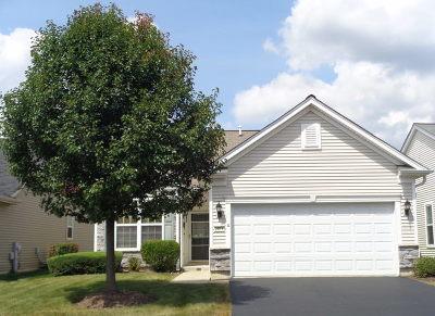 Elgin Single Family Home New: 2816 Cascade Falls Circle