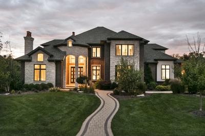 Burr Ridge Single Family Home For Sale: 9702 Secret Forest Drive