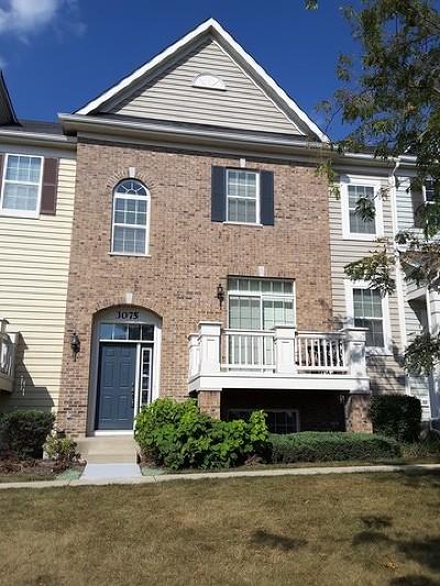 Elgin Single Family Home New: 3075 Marion Street