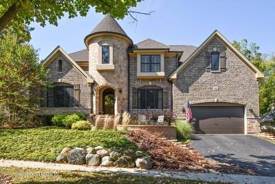 Barrington Single Family Home For Sale: 540 South Summit Street