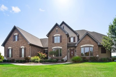 St. Charles Single Family Home For Sale: 475 River Ridge Drive