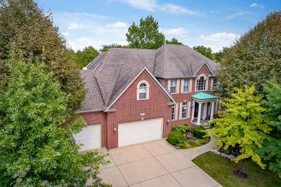 Batavia Single Family Home Contingent: 2303 Big Woods Drive