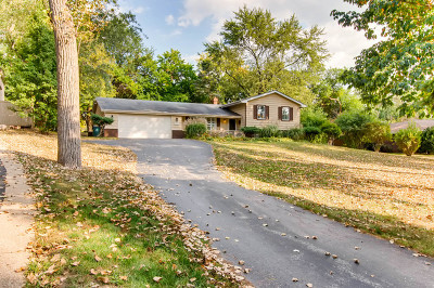 Downers Grove Single Family Home For Sale: 8021 Fairmount Avenue