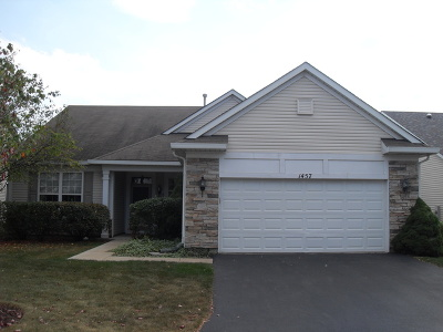 Romeoville Single Family Home For Sale: 1457 West Flint Lane