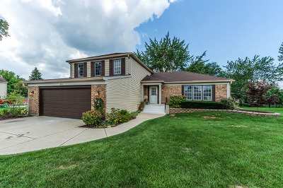 Wheaton Single Family Home For Sale: 1586 Scottdale Circle