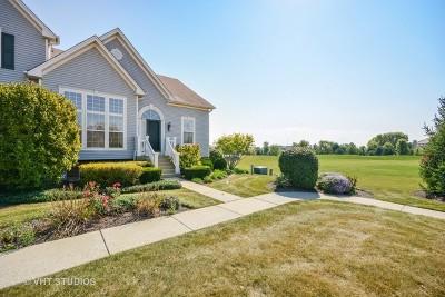 Batavia Condo/Townhouse For Sale: 2046 Peterson Place #2046
