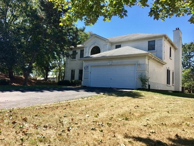 Bolingbrook Single Family Home For Sale: 401 Delaware Circle