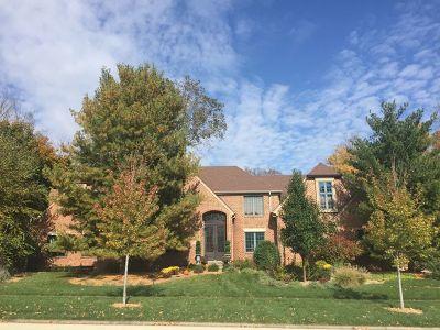 Mokena Single Family Home For Sale: 11640 Swinford Lane