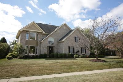 Batavia Single Family Home For Sale: 1244 Payne Avenue