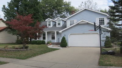Palatine Single Family Home For Sale: 3385 Coventry Court