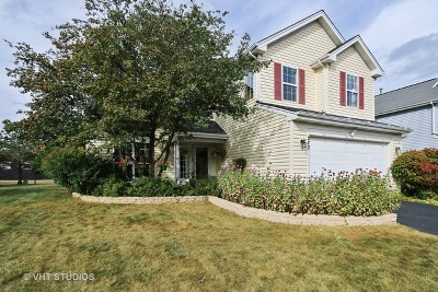 Round Lake Single Family Home For Sale: 272 West Blackthorn Court