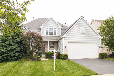Round Lake Single Family Home For Sale: 35 North Inverness Court
