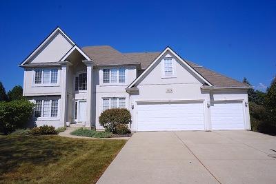 High Meadow Single Family Home For Sale: 5039 Prairie Sage Lane