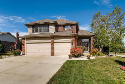 Orland Park Single Family Home For Sale: 11738 Burnley Drive