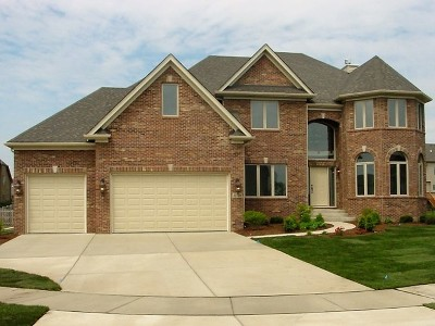 Naperville Single Family Home Contingent: 28 Pinnacle Court