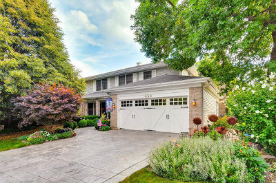 Palatine Single Family Home For Sale: 323 West Terrace Court