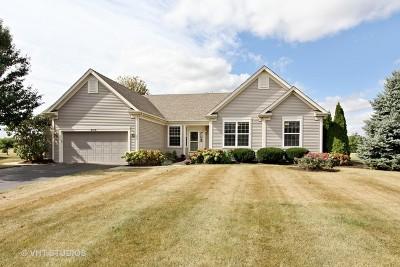 Spring Grove Single Family Home For Sale: 9109 Daniel Lane