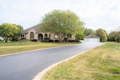 Lockport Single Family Home Contingent: 21025 Alicia Court