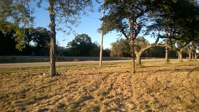 Tinley Park Residential Lots & Land For Sale: 6301 Oak Forest Avenue