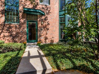 Oak Park Condo/Townhouse For Sale: 101 North Euclid Avenue #2