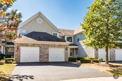 Naperville Condo/Townhouse For Sale: 941 Sheridan Circle #941