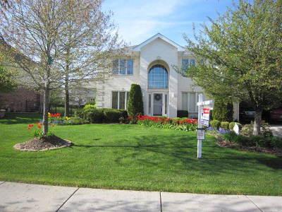 Homer Glen Single Family Home For Sale: 12102 Joan Marie Drive