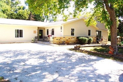 Antioch Single Family Home For Sale: 41459 North Lincoln Avenue